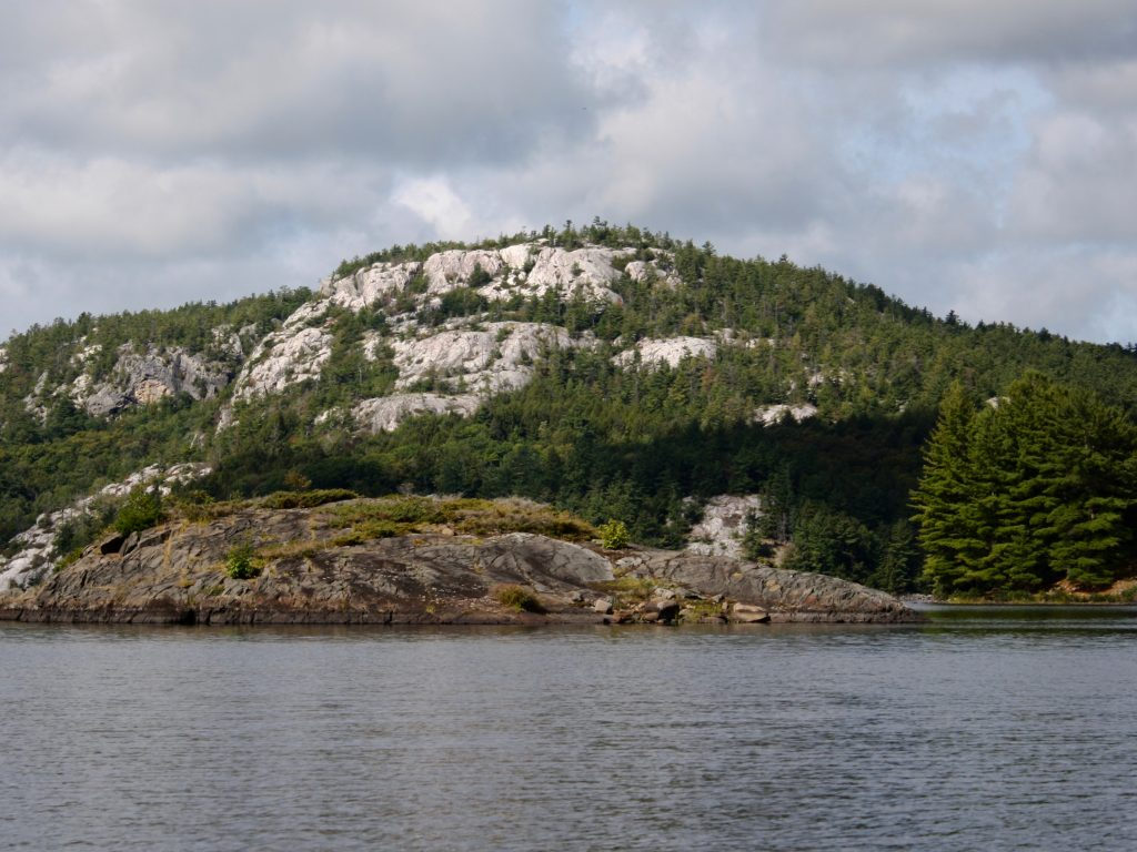 Silver hillside and pine trees in Killarney Provincial Park