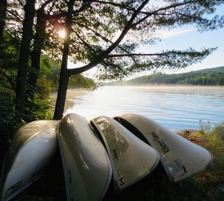 Canoes overturned on the shore, in front of Nellie Lake, a popular Killarney canoe route