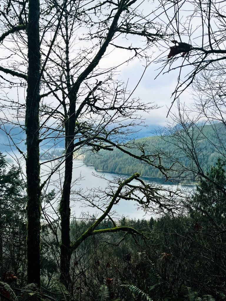 View of ocean and coastline from Burnaby Mountain Vancouver Hiking Trail