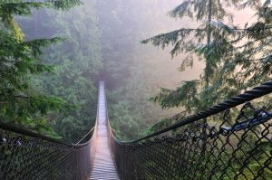 Lynn Canyon Suspension Bridge in Vancouver