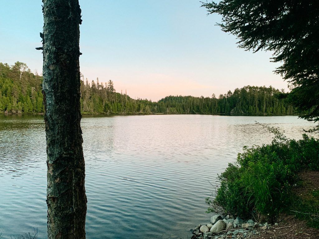 Sun is setting on a lake surrounded by pine trees in Temagami, one of my favourite places for crown land camping in Ontario.